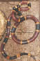Texas Coral Snake
